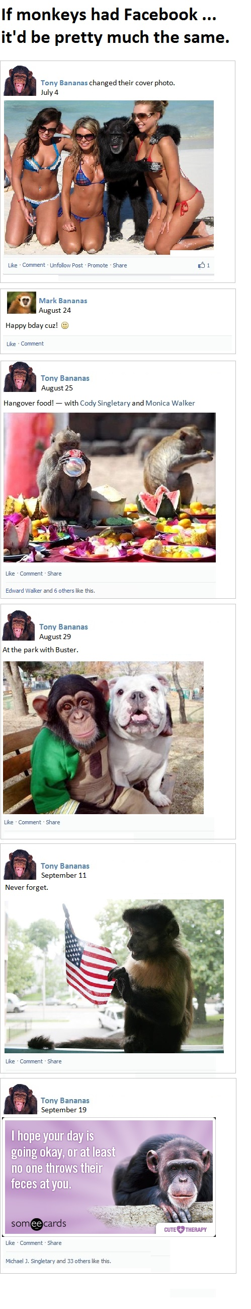 If Monkeys Had Facebook